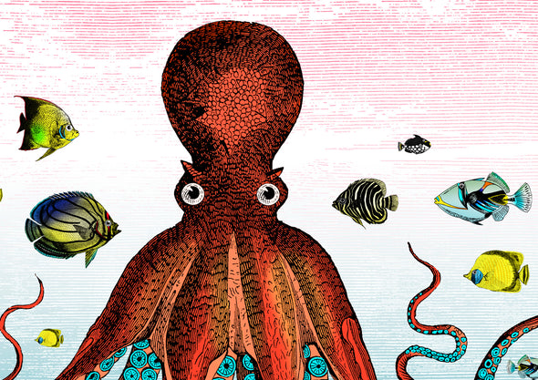 The Great Barrier Reef - Giant Octopus - Art Print - Kristjana S Williams Studio