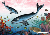 The Great Barrier Reef - Minke Whales - Art Print - Kristjana S Williams Studio