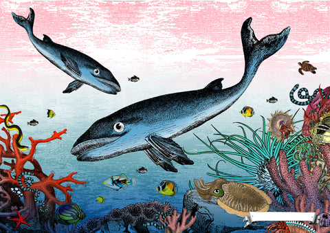 Great Barrier Reef Minke Whales art print from Wonder Garden children's book by artist Kristjana S Williams