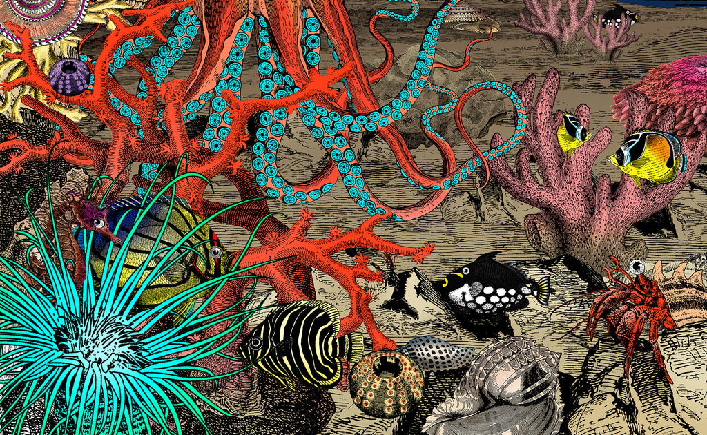 The Great Barrier Reef - World's greatest coral reef - Art ...