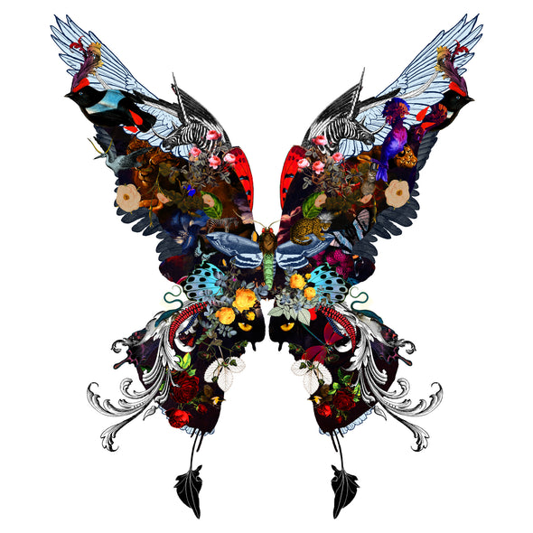 The Voyager Butterfly - Art Print - Kristjana S Williams Studio