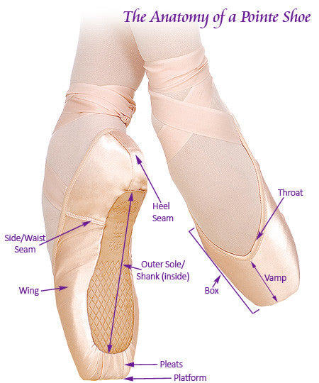 That's D Pointe Dance Shop's Pointe Shoe Fitting Guide