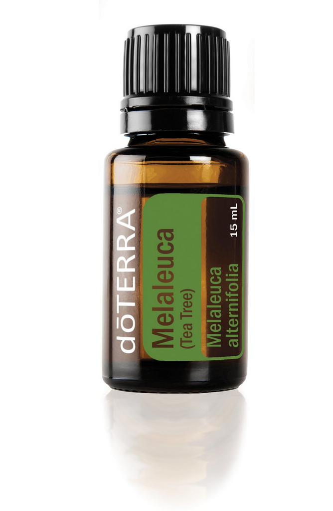 Tea Tree (Melaleuca) Essential Oil (Pre-Order)