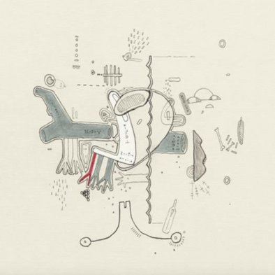 Frightened Rabbit - Tiny Changes: A Celebration Of The Midnight Organ Fight
