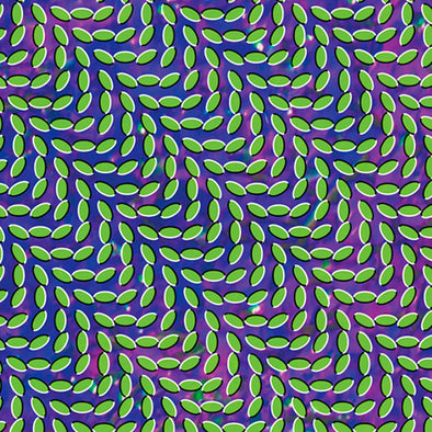 Animal Collective - Merriweather Post Pavillion<br>Double Vinyl LP