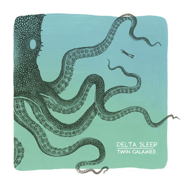 Delta Sleep - Twin Galaxies<br>Vinyl LP - Monkey Boy Records