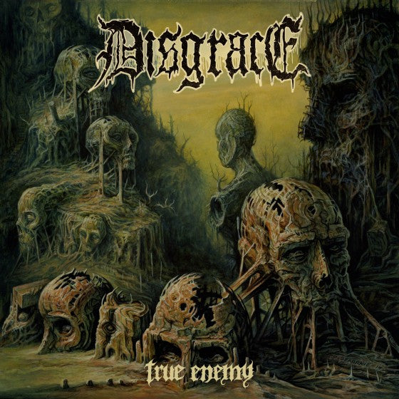 "Disgrace - True Enemy<br>12"" VInyl - Monkey Boy Records"