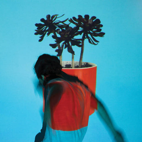 Local Natives - Sunlit Youth<br>Vinyl LP - Monkey Boy Records