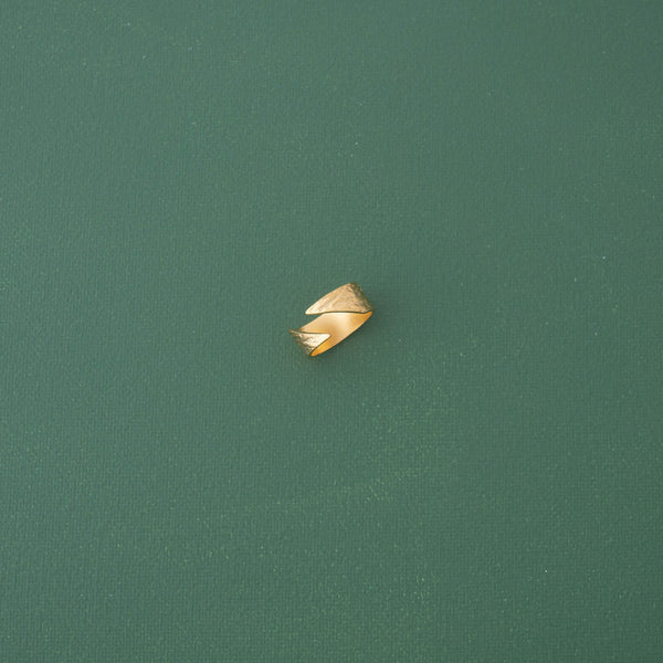 Modern Band Ring in Matte Gold - emme