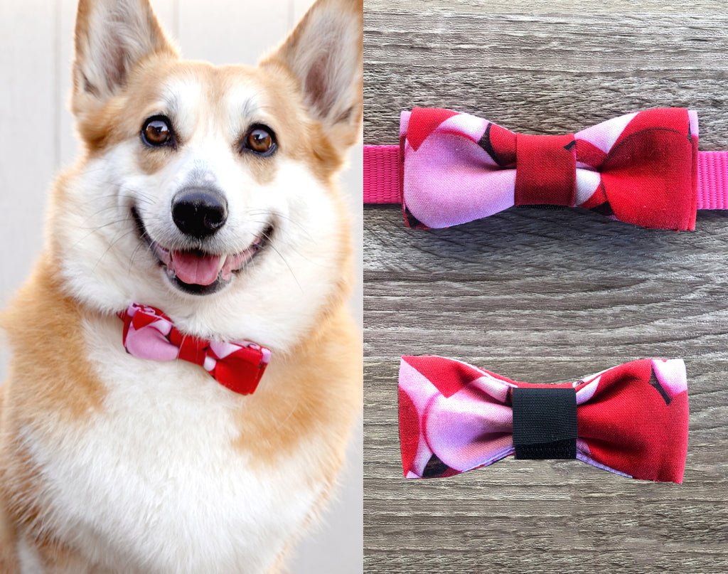 Bubble Party Dog Collar Bow Tie - Lilac Red Dog Bow