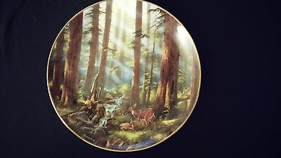 1993 God Bless America Sunlit Retreat Danbury Mint Collectors Edition Plate