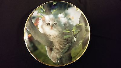 1994 Out On A Limb Grey Long Haired Cat In Tree Collectors Edition Plate
