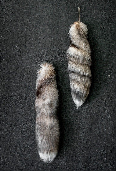 Marbled Fox Tail