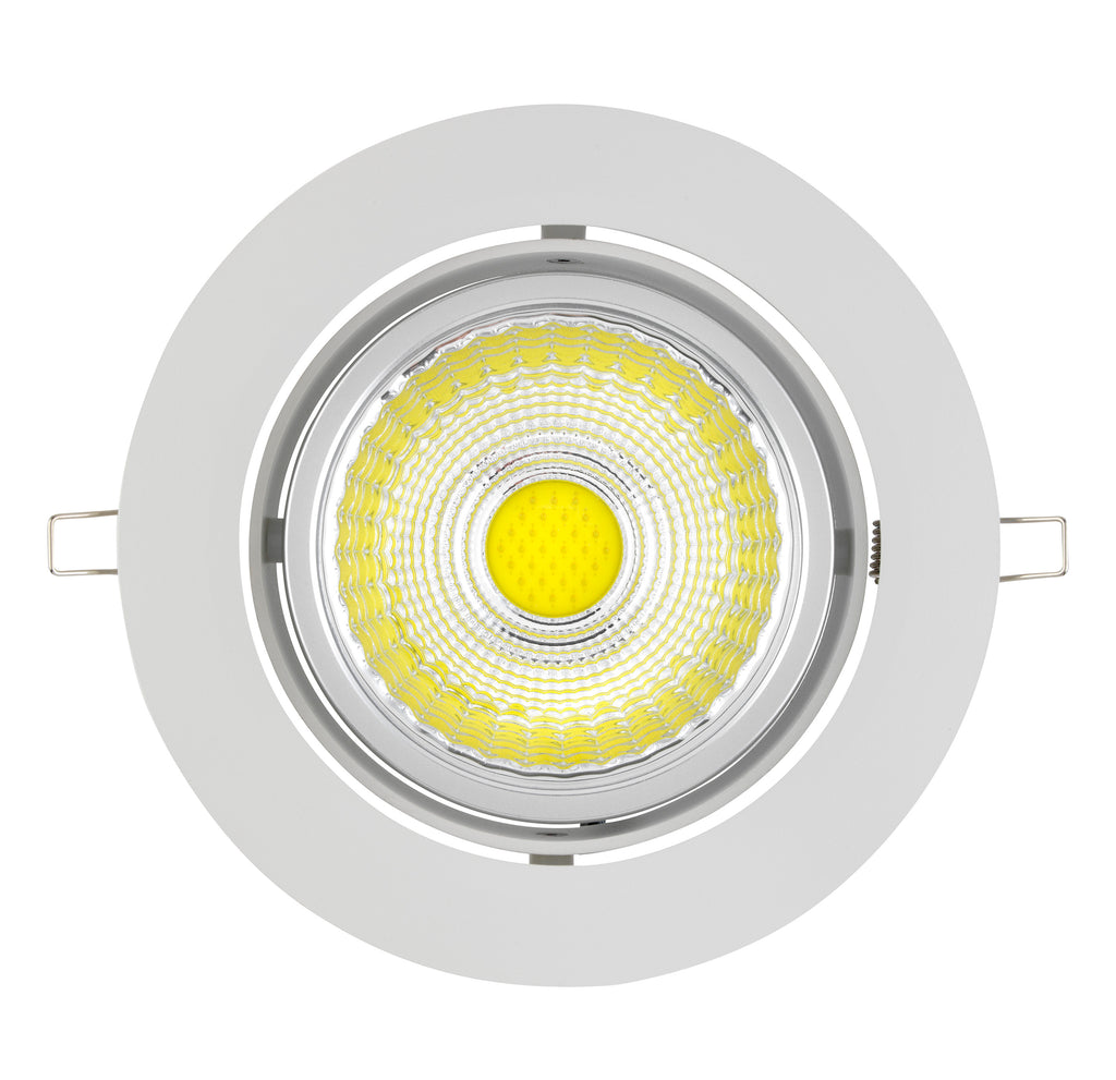 30W LED Downlight