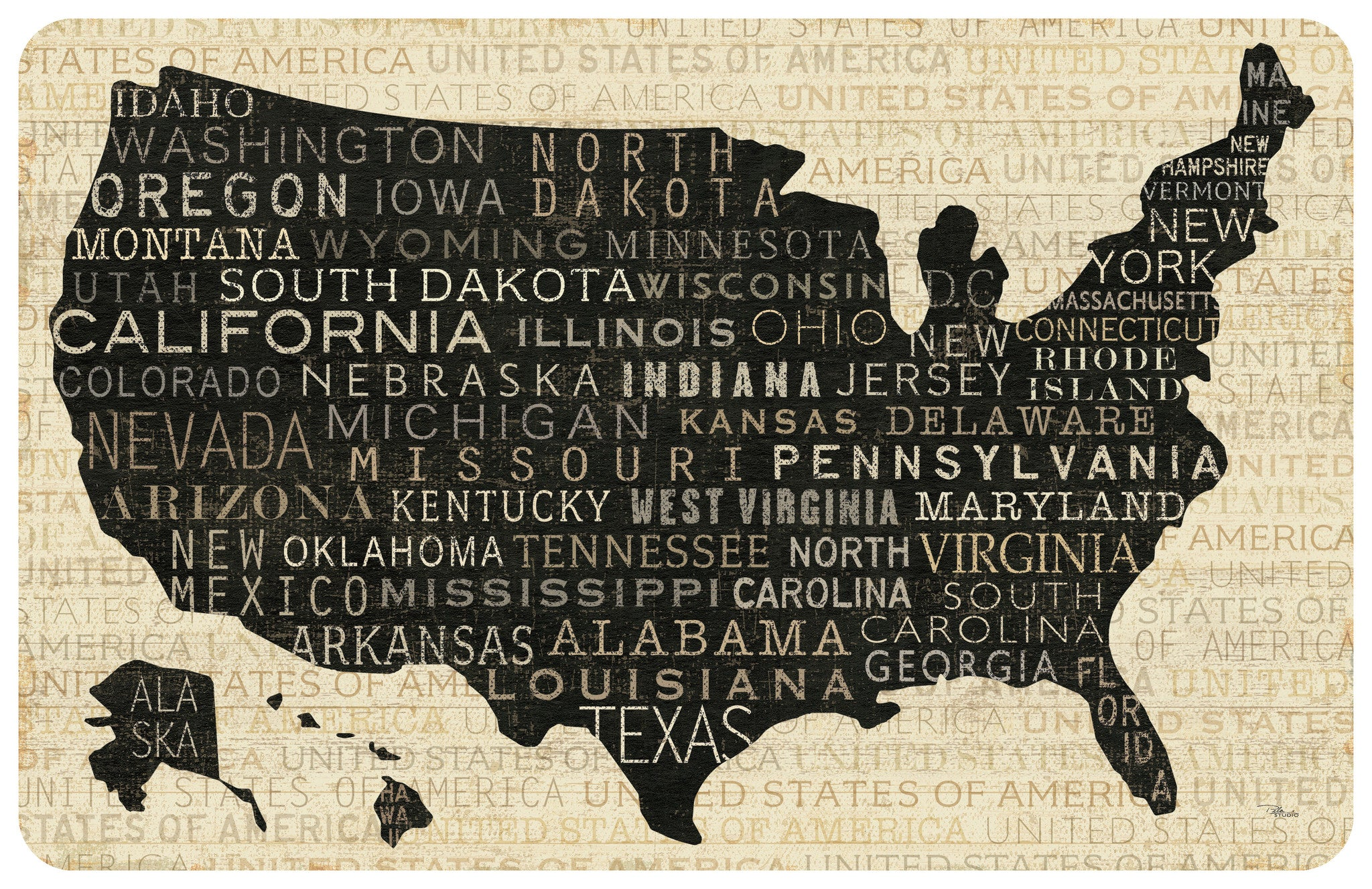 "USA Map 23""x36"" Accent Mat by Pela Studio"