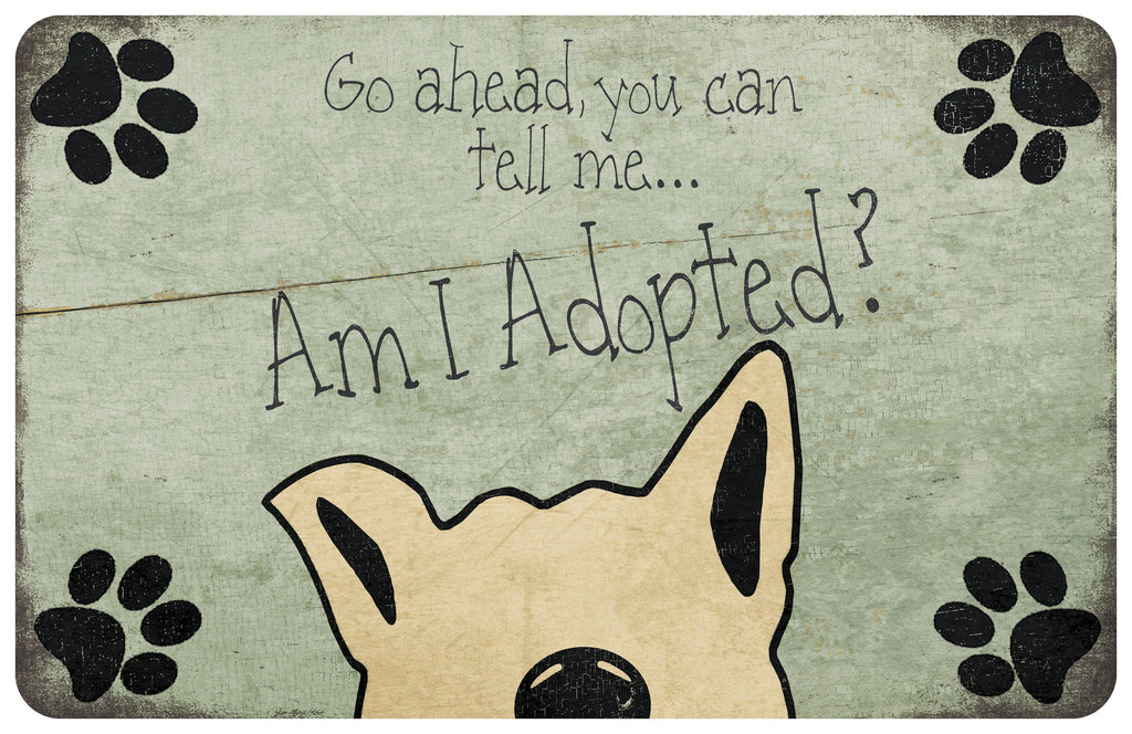 Wholesale- (2 units) Am I Adopted?