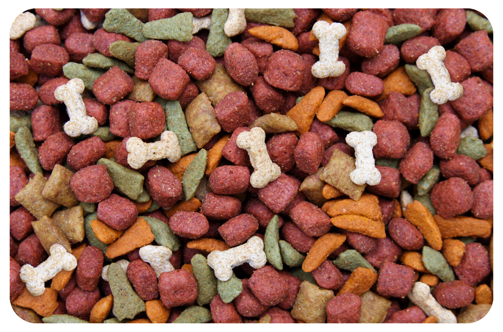 "Dogfood 18""x27"" Accent Mats"