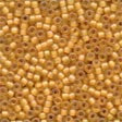 Mill Hill Frosted Seed Beads 62044 ~ Autumn  2.2mm