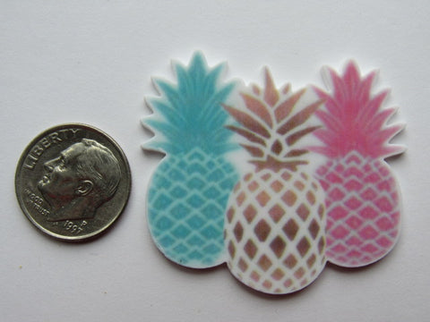 Needle Minder ~ Pineapples