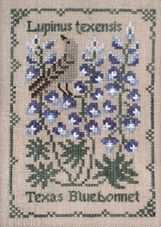 The Drawn Thread ~ BOTANICAL STITCHES - Lupinis texensis - Texas Bluebonnet