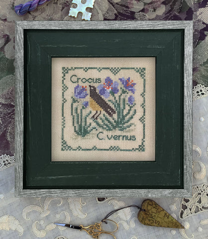 The Drawn Thread ~ BOTANICAL STITCHES - Crocus vernus - Crocus