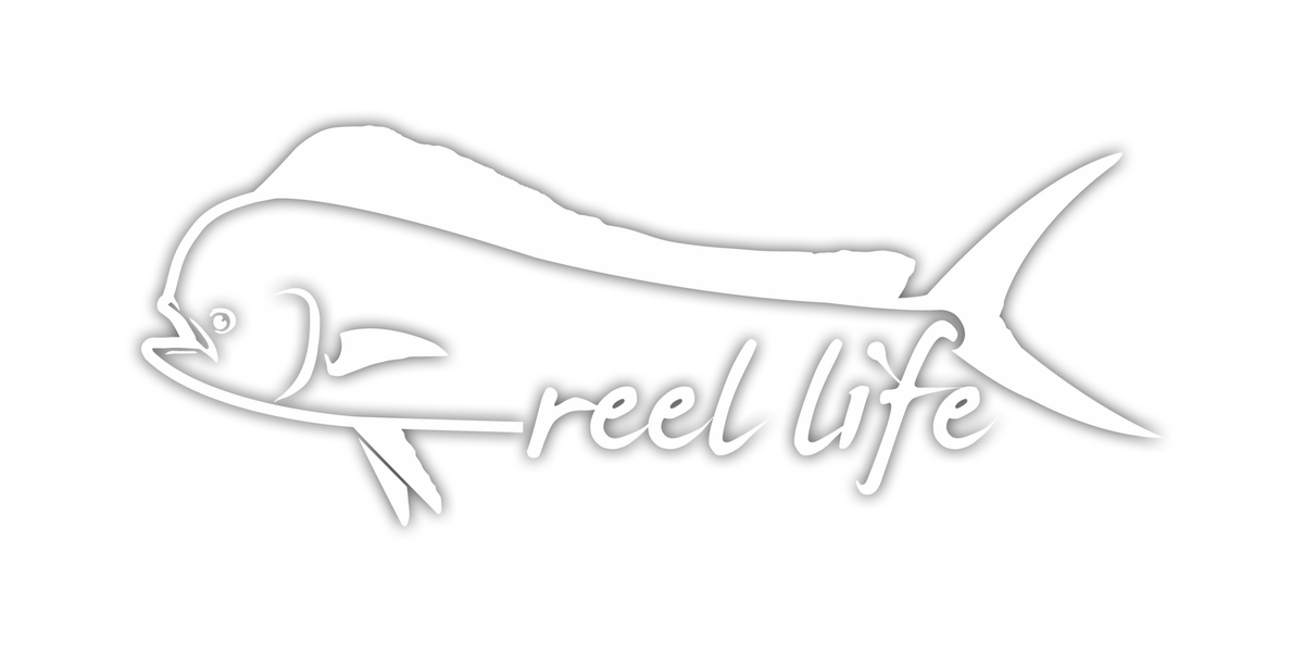 Dolphin Decal - 11 inches - Reel Life
