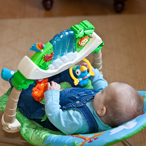 Bouncy Seat  1st week - $30