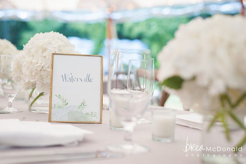 Hydrangea table name
