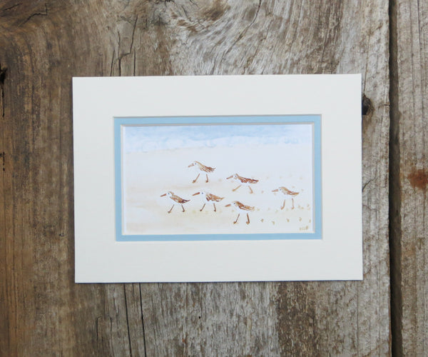 Piping Plovers Mini Print