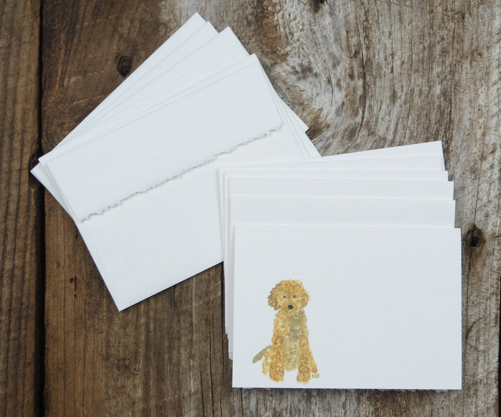 Goldendoodle Notes
