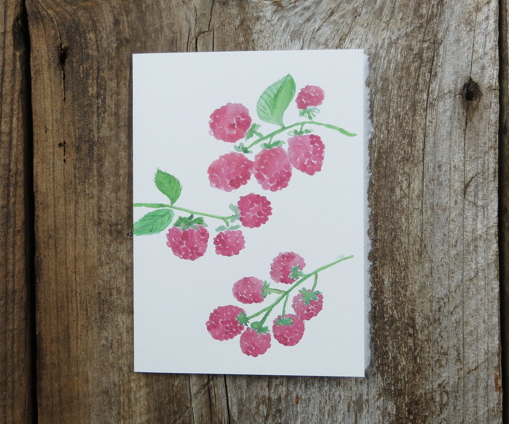 Fresh Raspberries Card