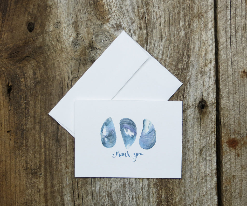 Mussel Shells Thank You Notes