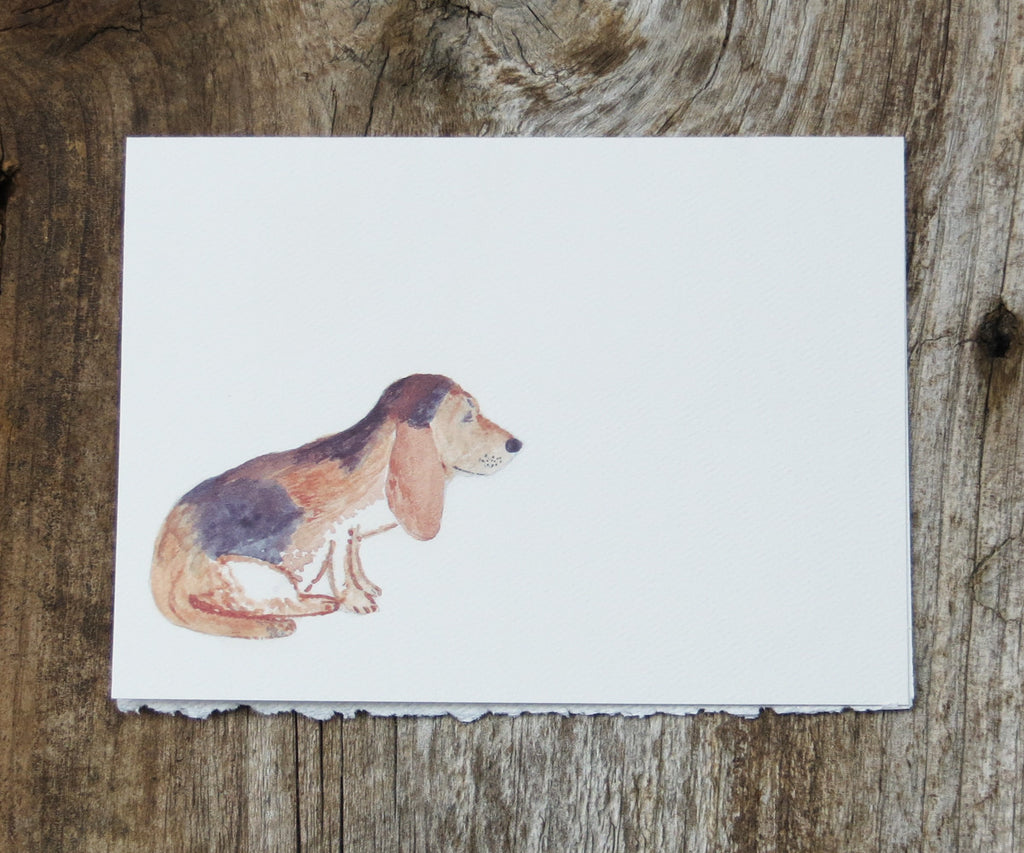 Beagle Pet Card