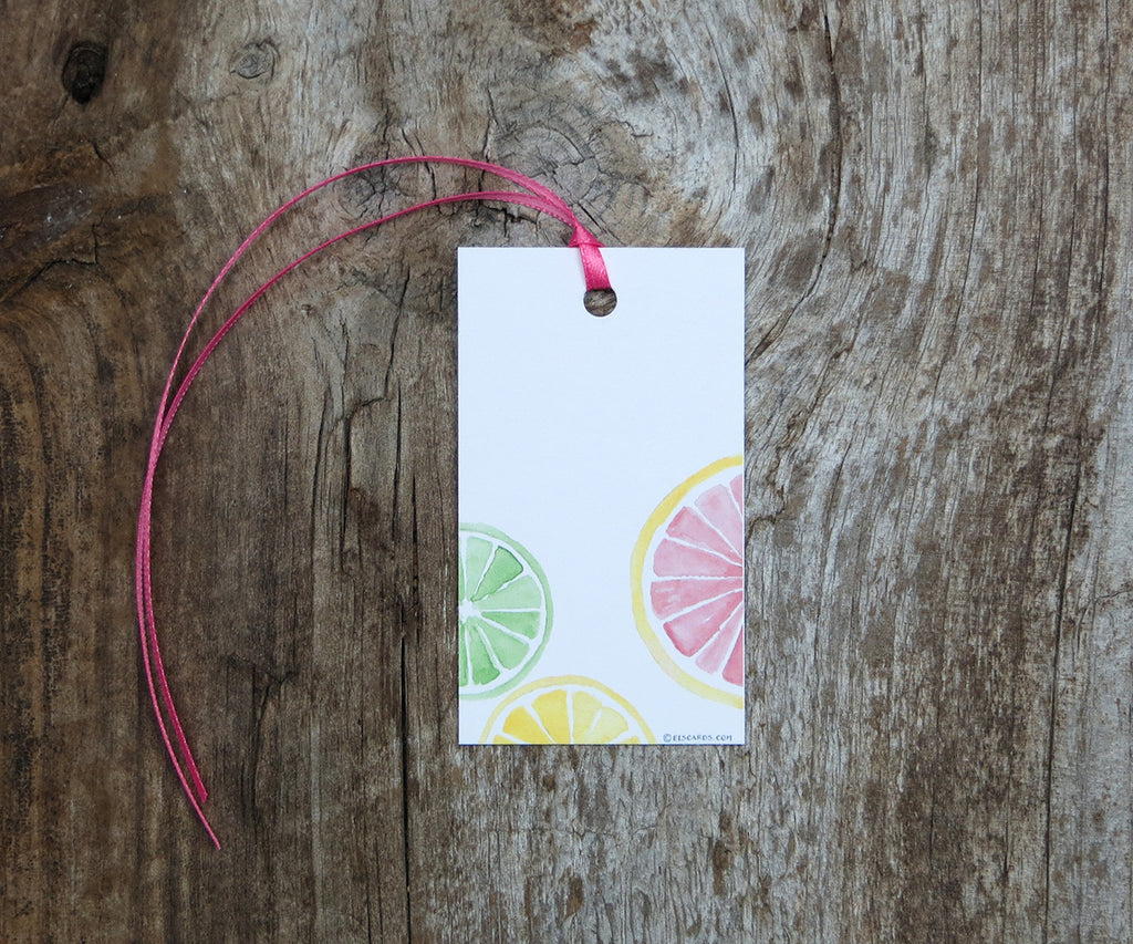 Citrus Slices Gift Tags