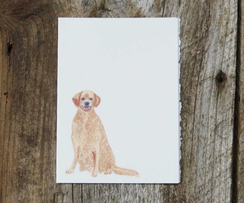Golden Retriever Pet Card