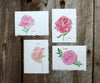 Summer Peonies Notes