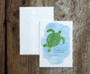 Sea Turtle Notes