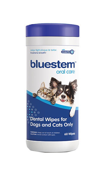 BLUESTEM™ DENTAL WIPES