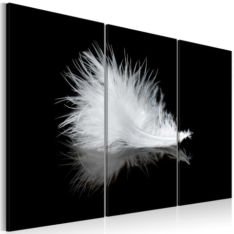Canvas Print - A small feather