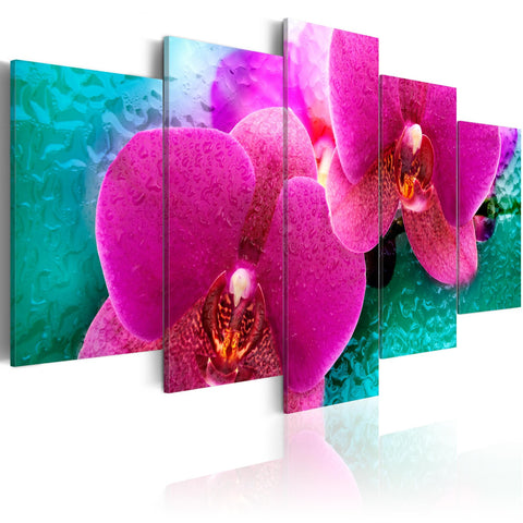 Canvas Print - Exotic orchids