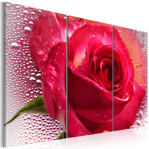 Canvas Print - Lady Rose - triptych