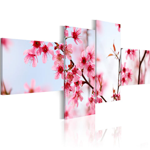 Canvas Print - Beauty of the cherry flowers
