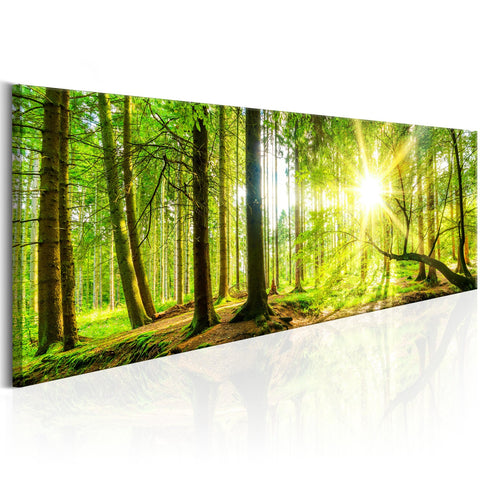 Canvas Print - Majestic Trees