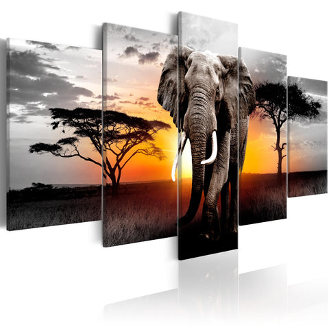 Canvas Print - Elephant at Sunset