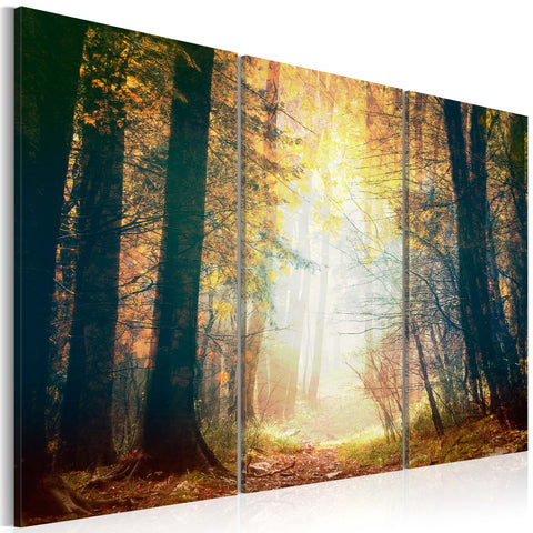 Canvas Print - Beauty of autumn - triptych
