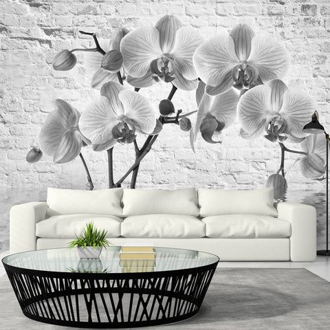 Wallpaper - Orchid in Shades of Gray