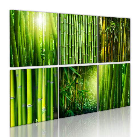 Canvas Print - Bamboo has many faces
