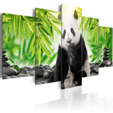 Canvas Print - Sweet Little Panda