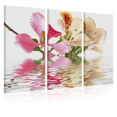 Canvas Print - Orchid with colorful spots