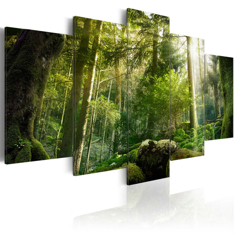 Canvas Print -  The Beauty of the Forest